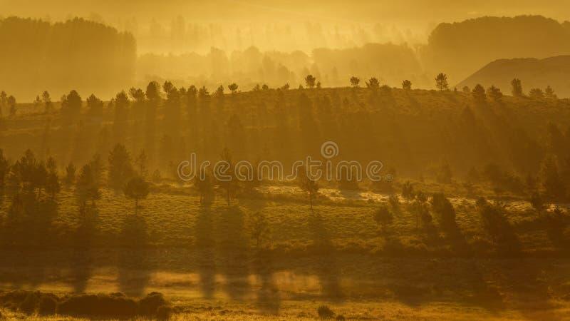Luz hermosa de la parte posterior del amanecer con los árboles y las colinas imagen de archivo