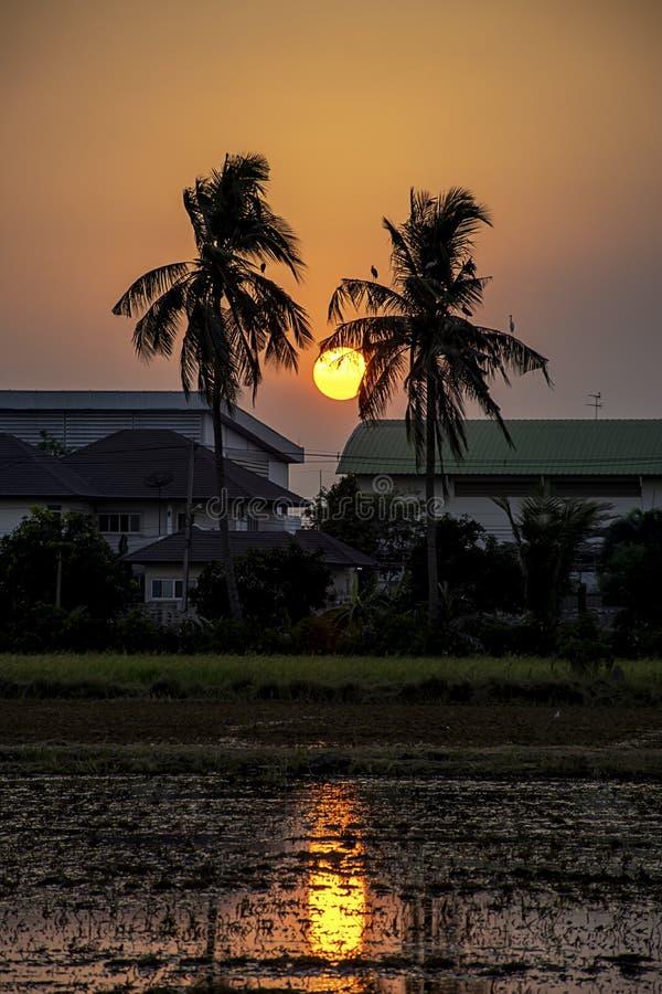 Luz hermosa de la puesta del sol con las nubes en la reflexión del cielo detrás del edificio y de los árboles foto de archivo