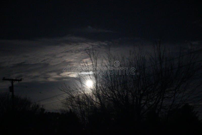 Luz na escuridão fotos de stock