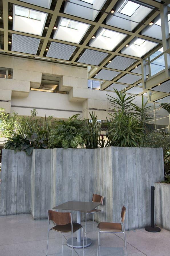 Luz natural del eco de los interiores verdes del edificio de oficinas imagenes de archivo