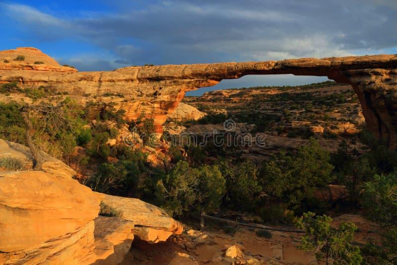 Luz pasada que brilla en el puente espectacular de Owachomo, monumento nacional de los puentes naturales, Utah de la tarde foto de archivo libre de regalías