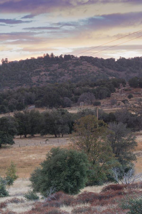 Luz solar do amanhecer nos montes no outono, bosque do primeiro plano dos carvalhos verdes americanos, céu bonito do nascer do so foto de stock