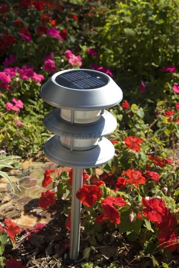 Luz solar do jardim foto de stock