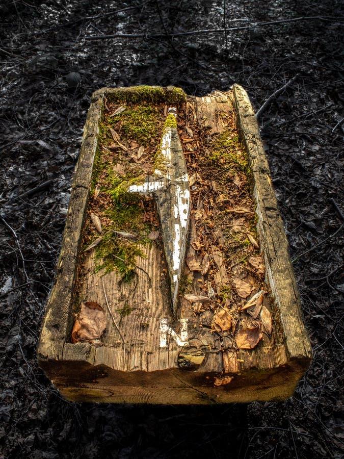 Luz solar em um compasso de madeira velho na floresta fotos de stock