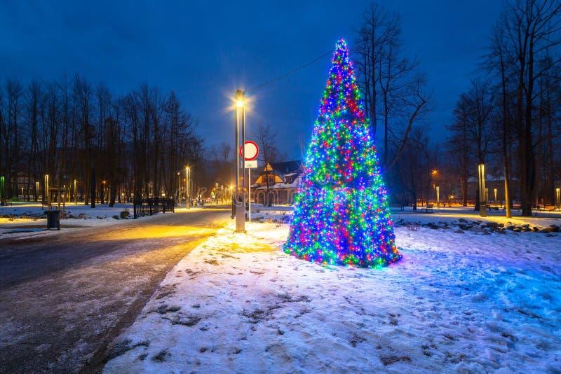 Luzes da árvore de Natal no parque foto de stock