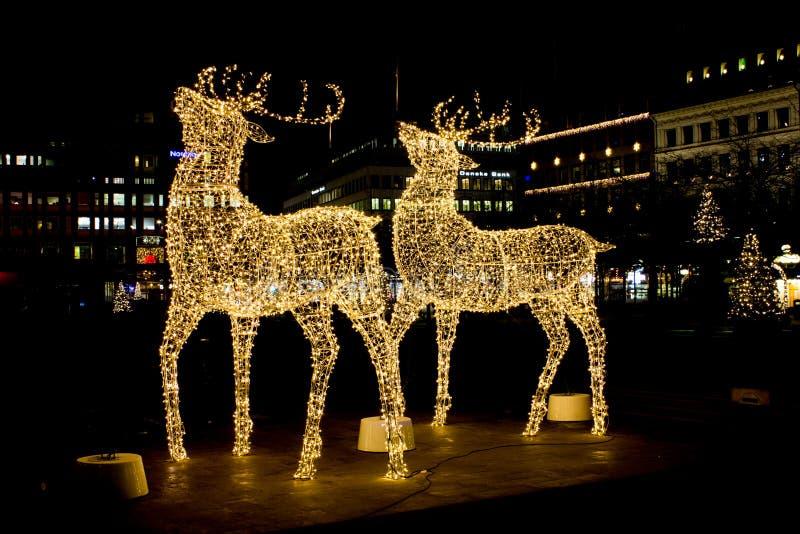 Luzes da decoração dos cervos pelo Natal e o ano novo fotos de stock royalty free