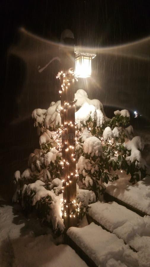Luzes da neve fotos de stock