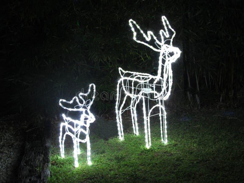 Luzes da rena do Natal imagem de stock