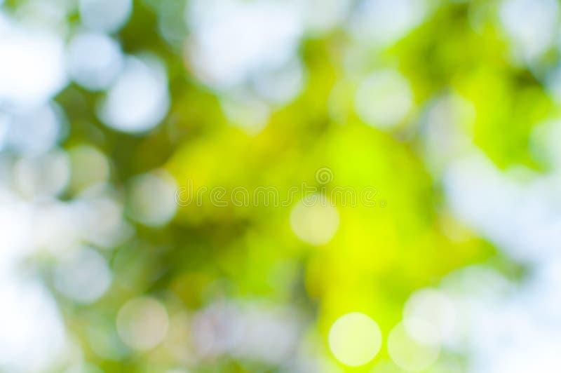 Luzes de Bokeh do uso da natureza como o fundo imagens de stock royalty free