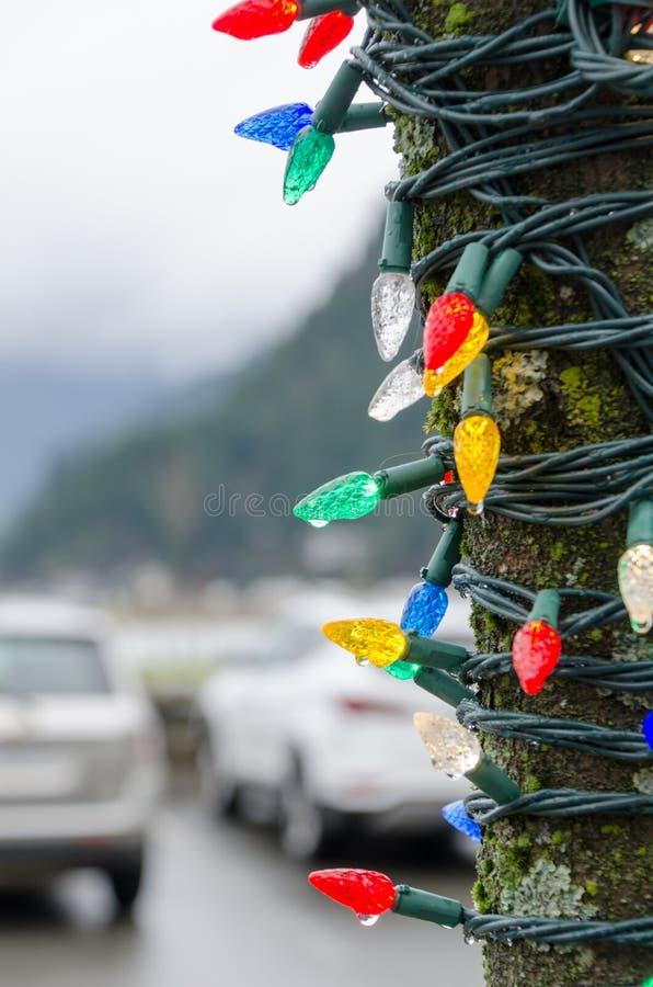 Luzes de Cristmas em uma luz do dia em uma árvore perto do parque de estacionamento foto de stock