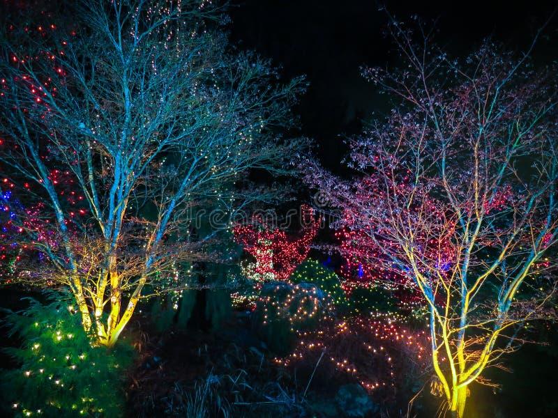 Luzes de Natal ao ar livre fotografia de stock royalty free