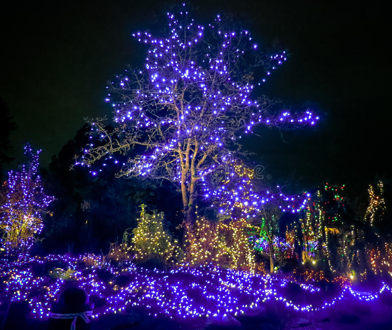 Luzes de Natal ao ar livre foto de stock