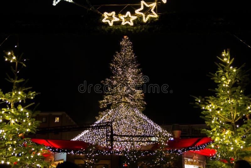 Luzes de Natal da noite e árvore Center no mercado do Natal da água de Colônia fotografia de stock royalty free