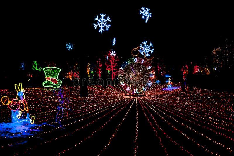 Luzes de Natal do jardim zoológico de Lincoln Park imagem de stock