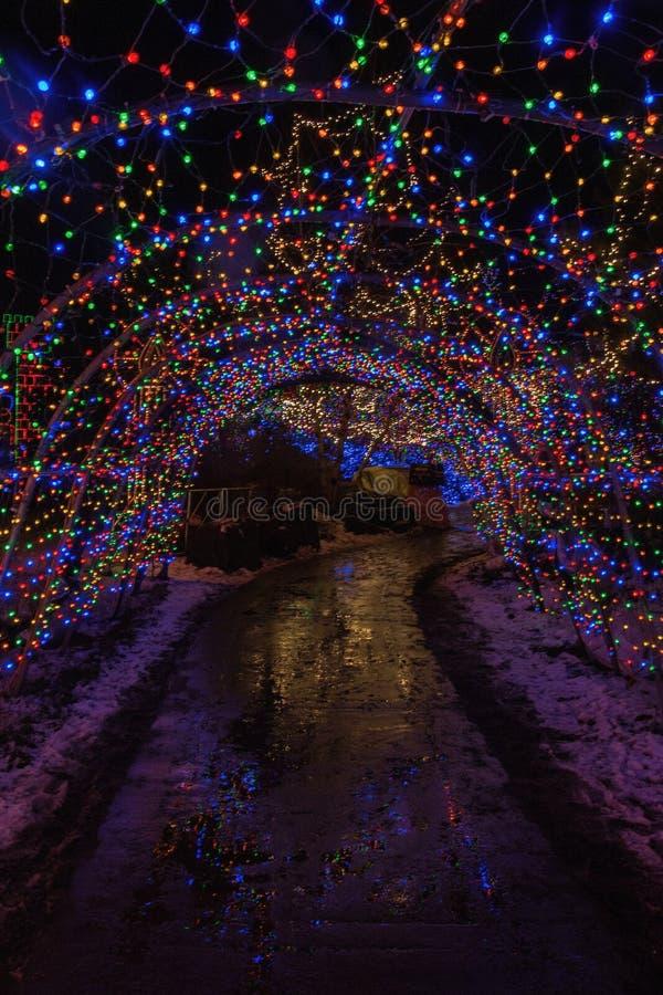 Luzes de Natal em Duluth, Minnesota durante a estação do inverno em costas do Lago Superior imagens de stock royalty free