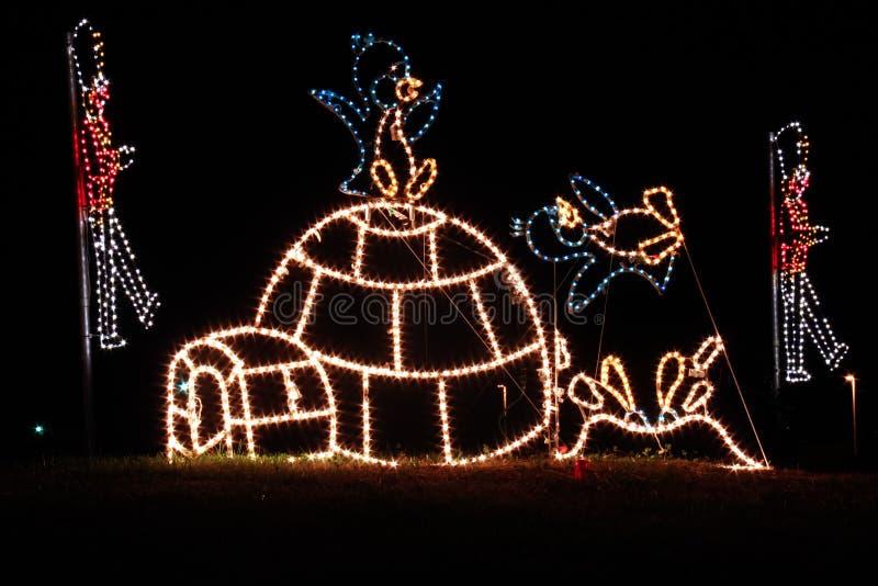 Luzes de Natal - pinguins e Igloo imagens de stock royalty free
