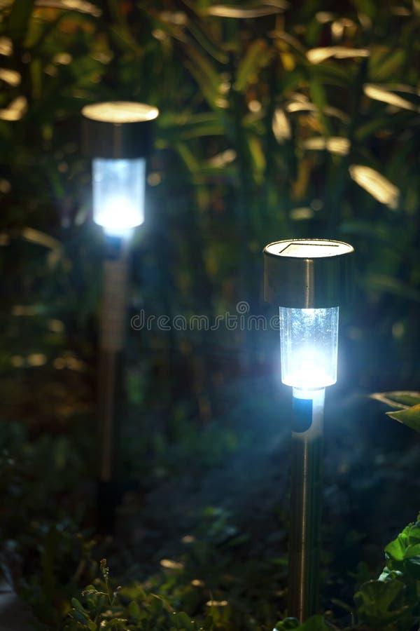Luzes do jardim da noite fotos de stock royalty free