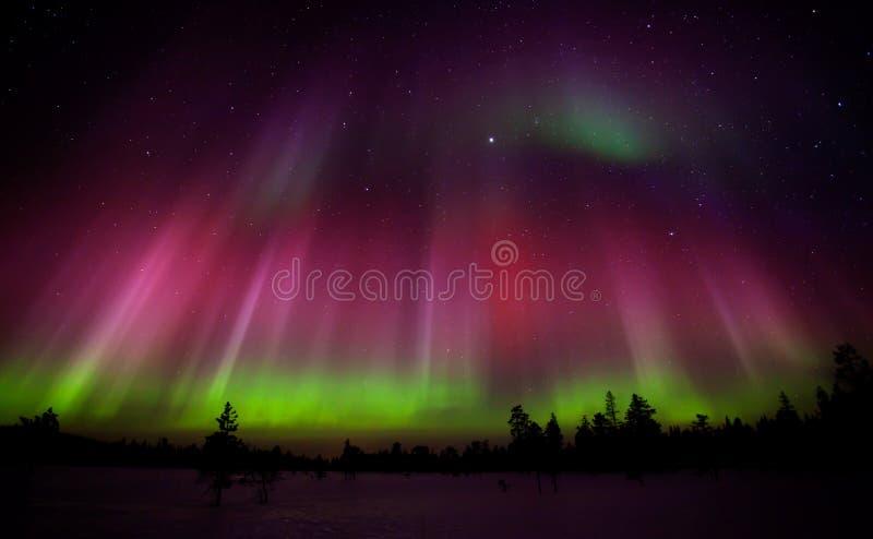 Luzes do norte fotos de stock royalty free