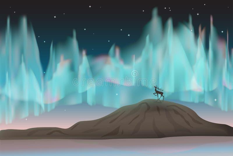Luzes do norte e cervos. ilustração stock
