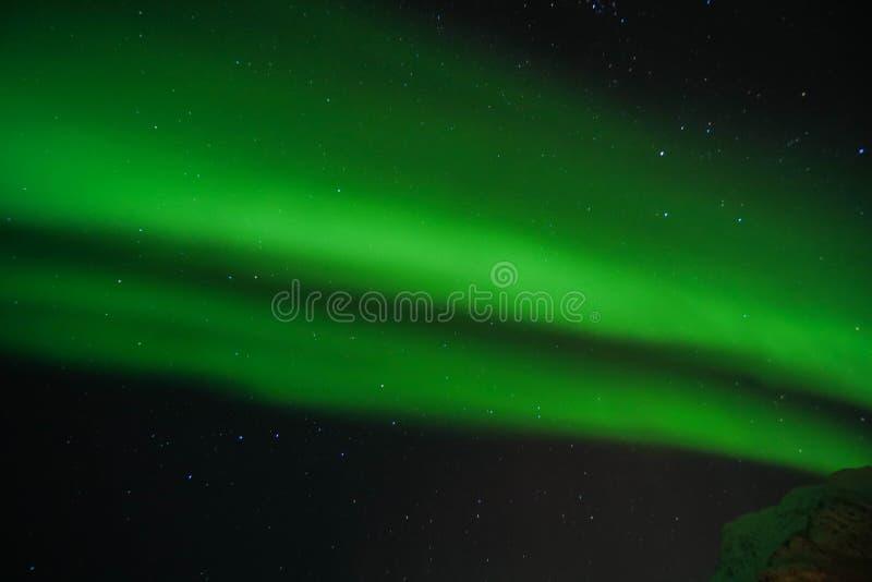 Luzes do norte verde-clara da Aurora da grão no céu claro na noite em ilhas Noruega de Lofoten ilustração do vetor