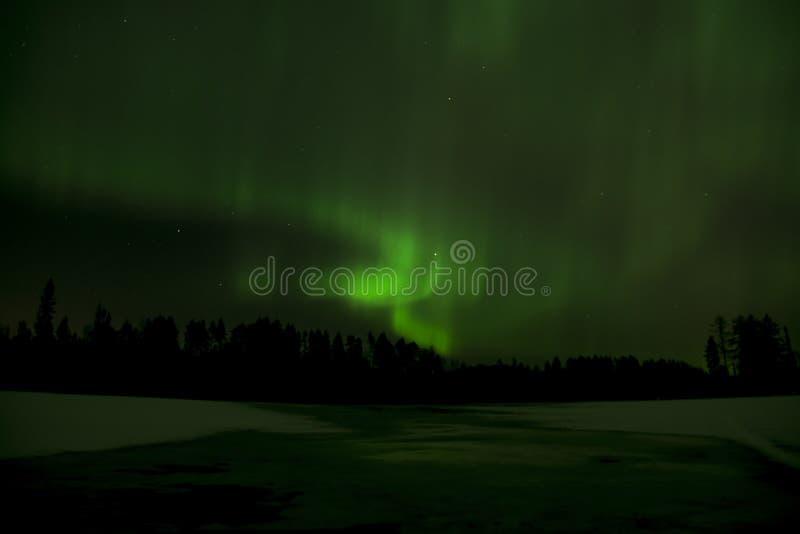 Luzes do norte verdes imagens de stock royalty free