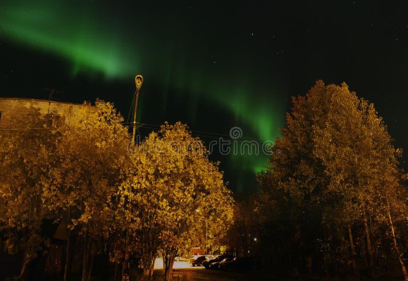 Luzes do norte verdes imagem de stock royalty free