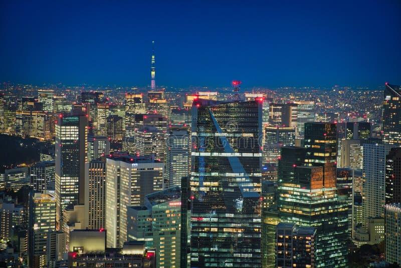 Luzes do Tóquio & da noite fotografia de stock royalty free