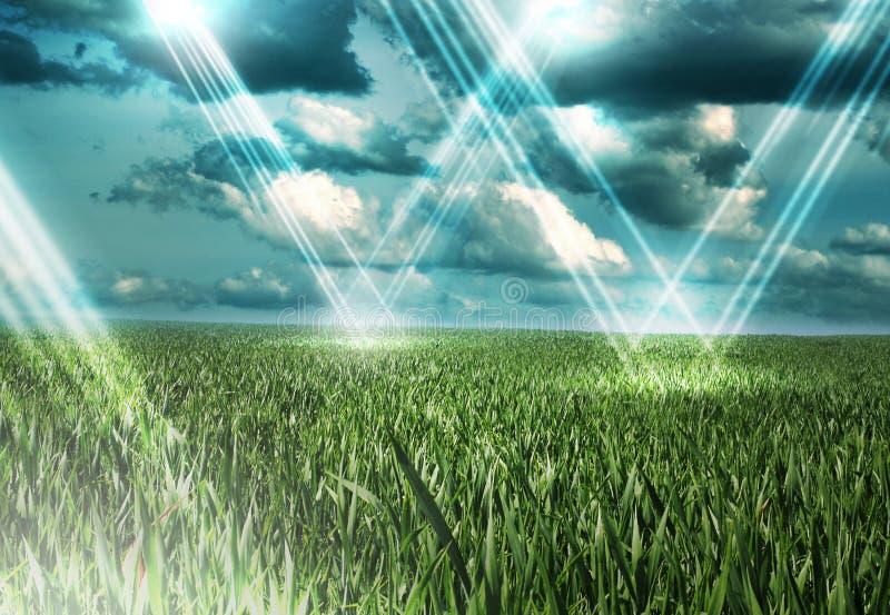 Luzes do withl do prado imagens de stock