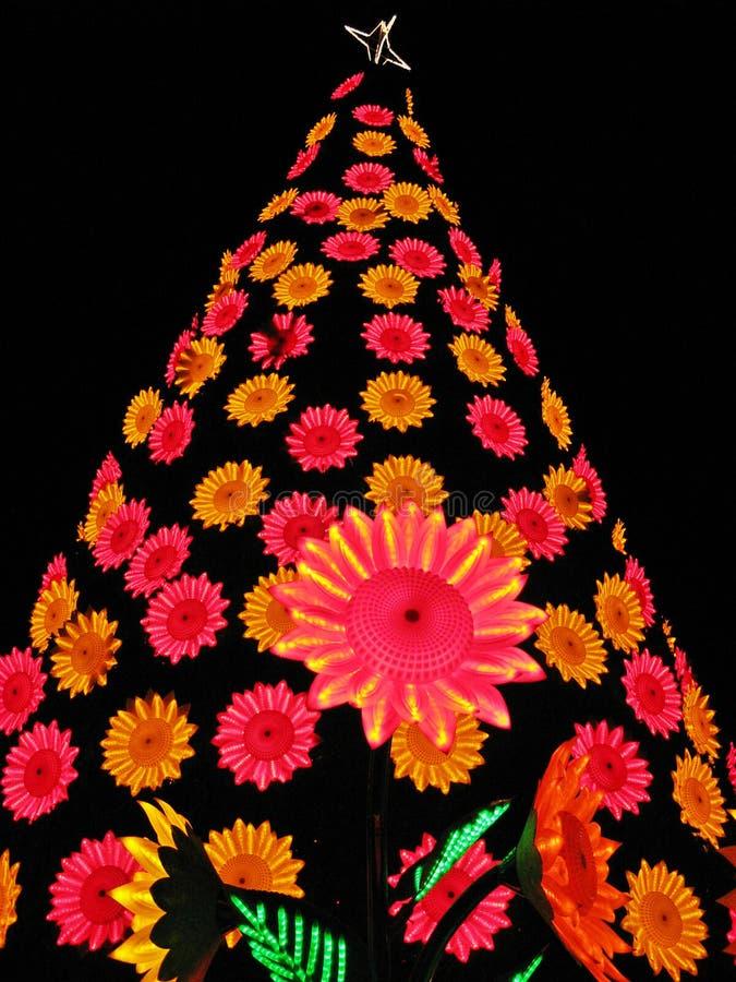 Luzes e decorações da rua no tempo do Natal em Bogotá, Colômbia fotos de stock royalty free