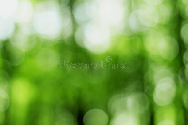 Luzes obscuras no fundo verde foto de stock