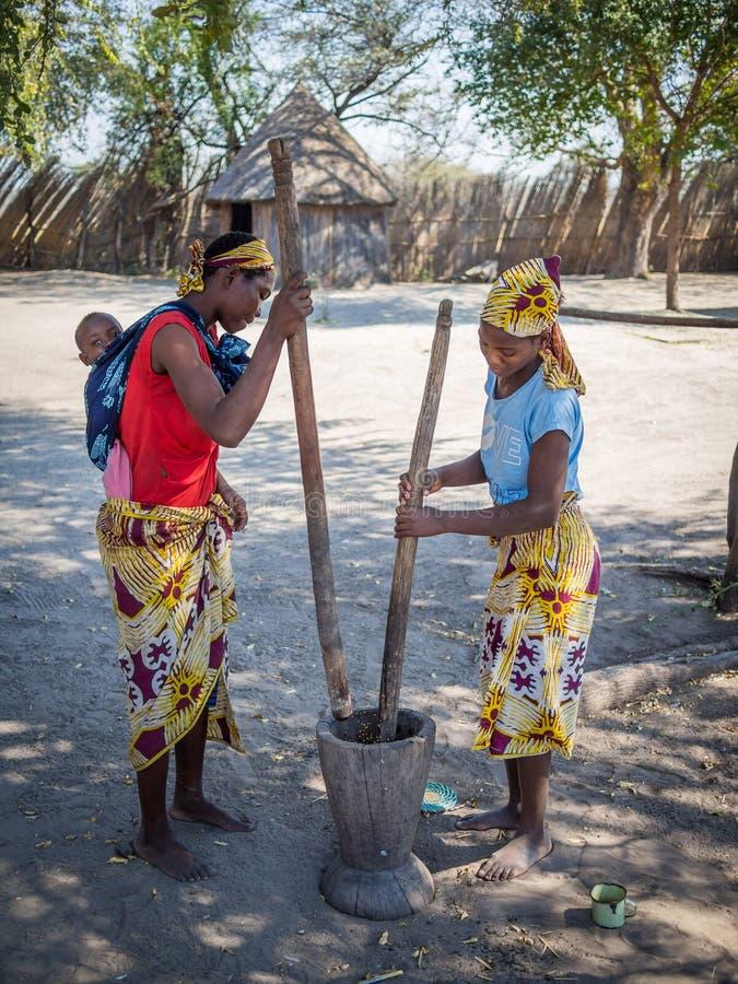 Luzibalule, Namibie - 13 août 2015 : Millet africain non identifié de frapper du pied de deux femmes au village traditionnel de L photographie stock libre de droits