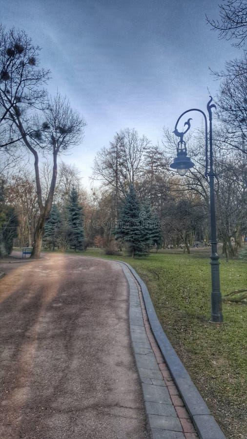 Lviv fotografering för bildbyråer