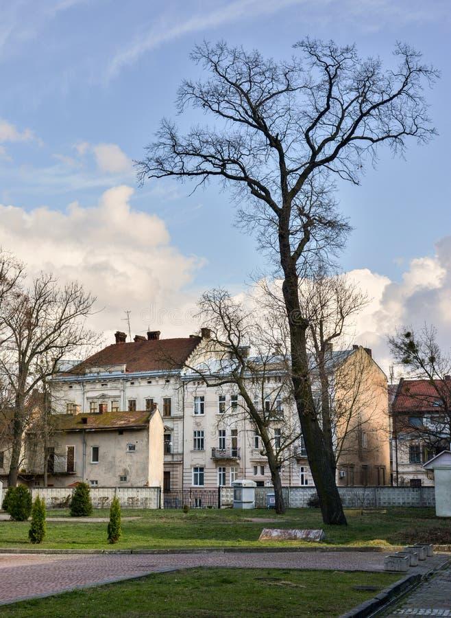 Lviv foto de stock