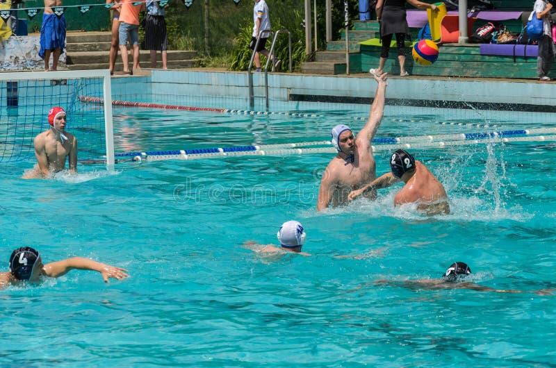 LVIV, DE OEKRA?NE - JUNI, 2019: Atleten in het polo van het pool speelwater royalty-vrije stock foto