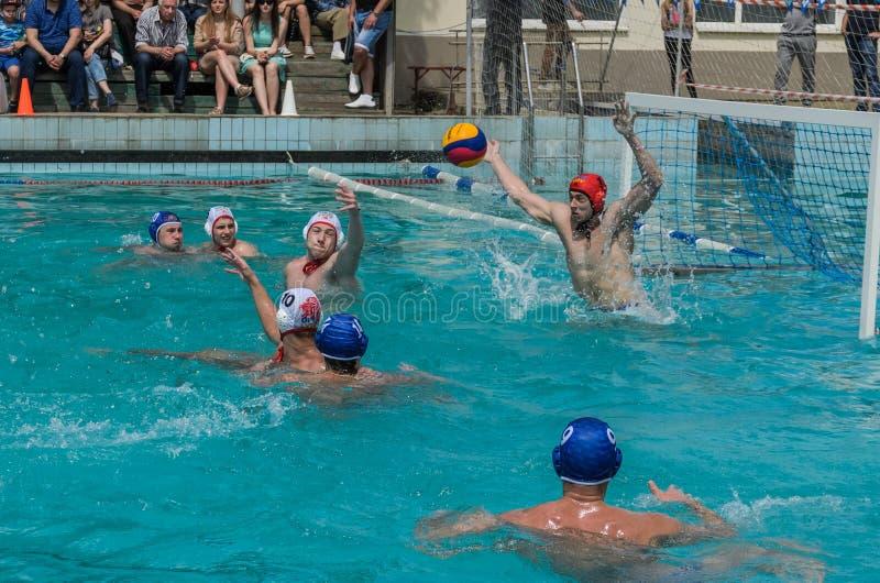 LVIV, DE OEKRA?NE - JUNI, 2019: Atleten in het polo van het pool speelwater stock afbeeldingen