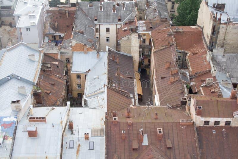 lviv rooftops arkivbild