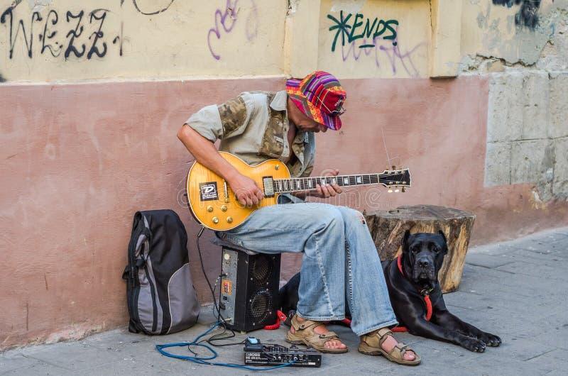 LVIV UKRAINA - AUGUSTI 2016: Att spela för gatamusiker vaggar slag av den elektriska gitarren som sitter med en stor svart hund,  royaltyfri bild