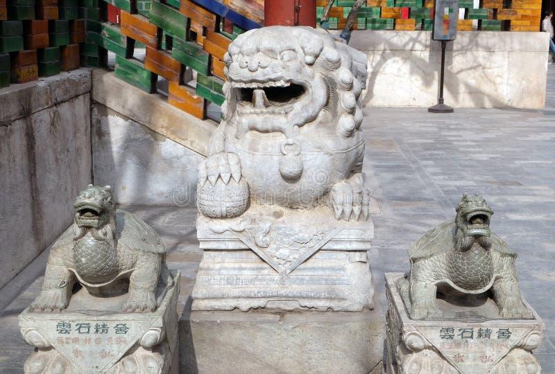 Lwa i żółwia statuy w Yonghe świątyni w Pekin zdjęcie royalty free