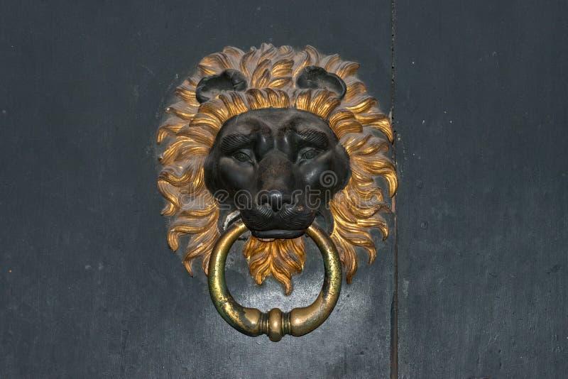 Lwa Kierowniczy Drzwiowy Knocker obraz royalty free