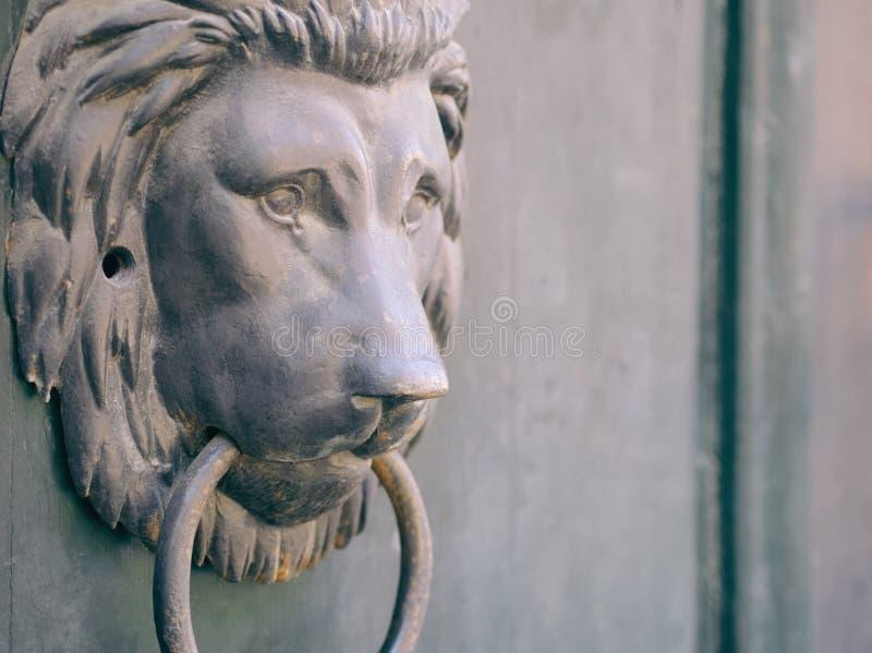 Lwa kierowniczy knocker obraz royalty free