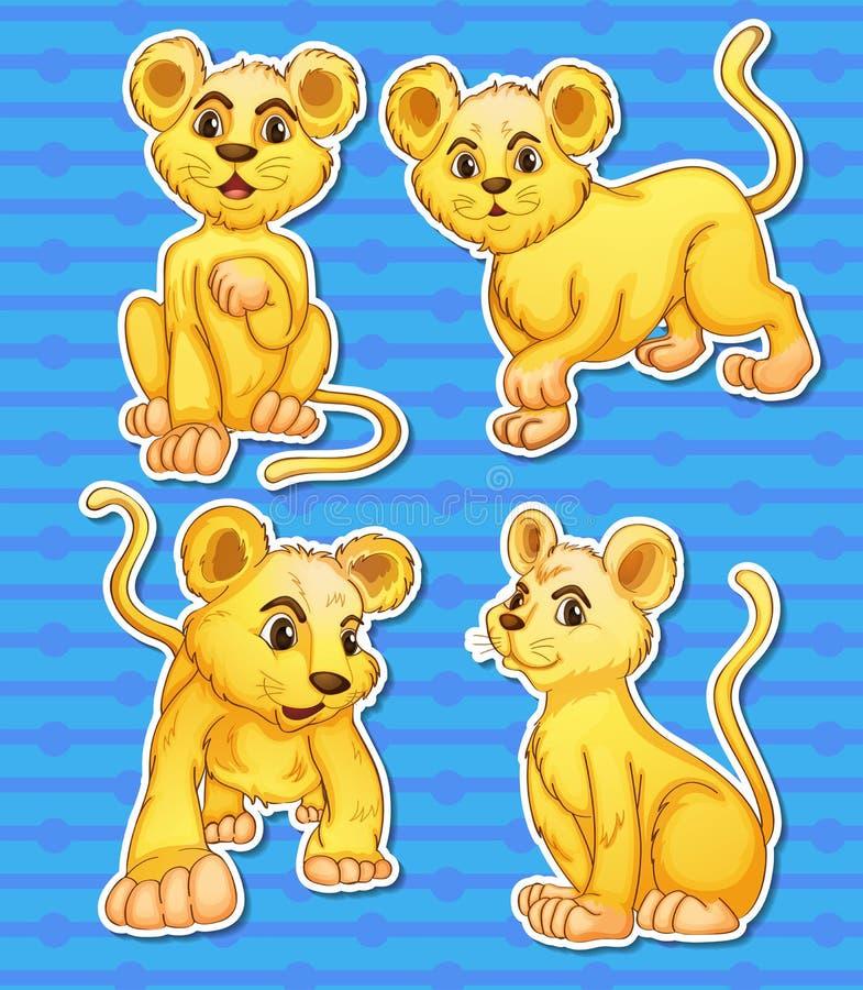 Lwa set royalty ilustracja