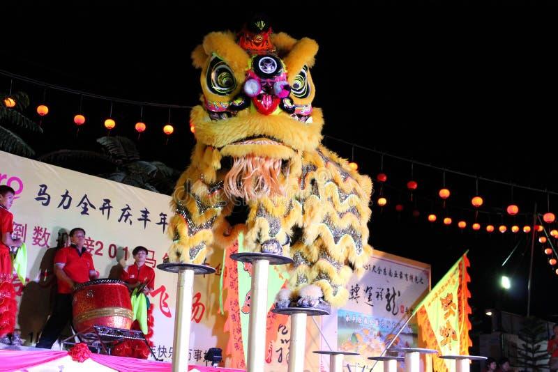 Lwa taniec z porcelanowym bębenem obrazy royalty free
