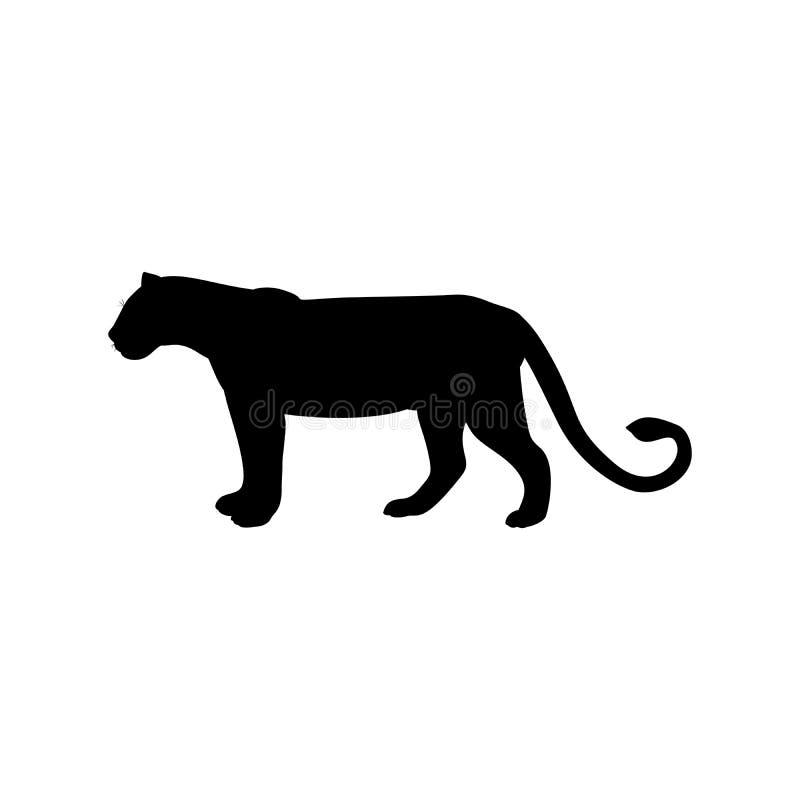 Lwica drapieżnika czerni sylwetki zwierzę ilustracja wektor