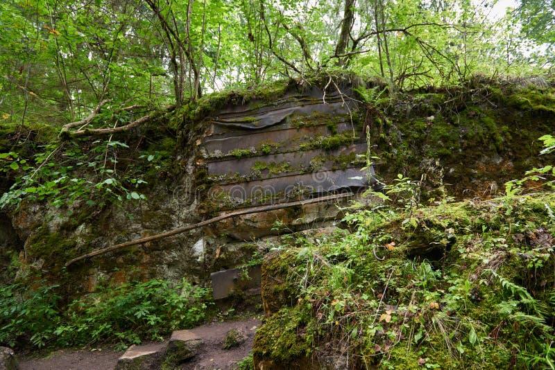 Lya-bunker för varg` s museum i Polen royaltyfria foton