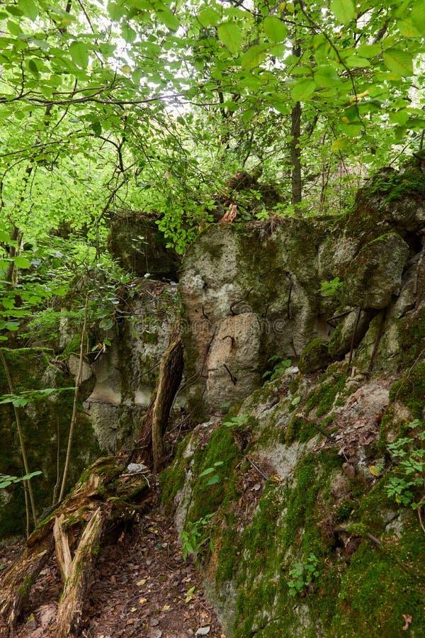 Lya-bunker för varg` s museum i Polen royaltyfria bilder