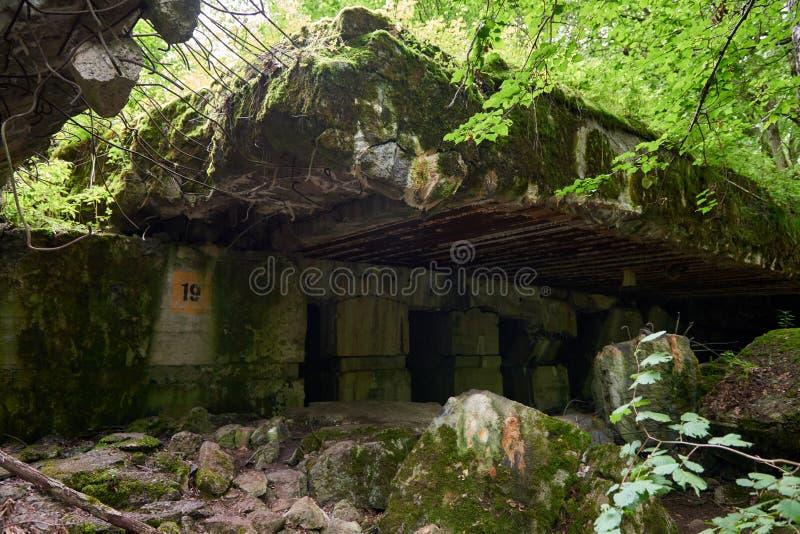 Lya-bunker för varg` s museum i Polen royaltyfri fotografi