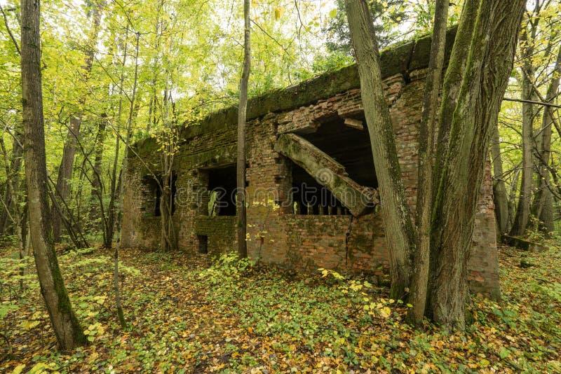 Lya för varg` s, bunker för Adolf Hitler ` s, Polen Första östliga främre militära högkvarter, världskrig II Komplext uppblåst, ö royaltyfri bild