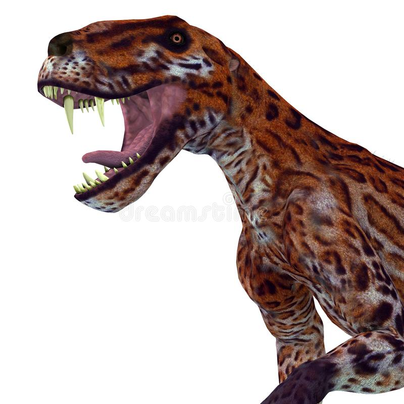 Lycaenops Cat Head. Lycaenops was a carnivorous cat-like dinosaur that lived in South Africa during the Permian Period royalty free illustration