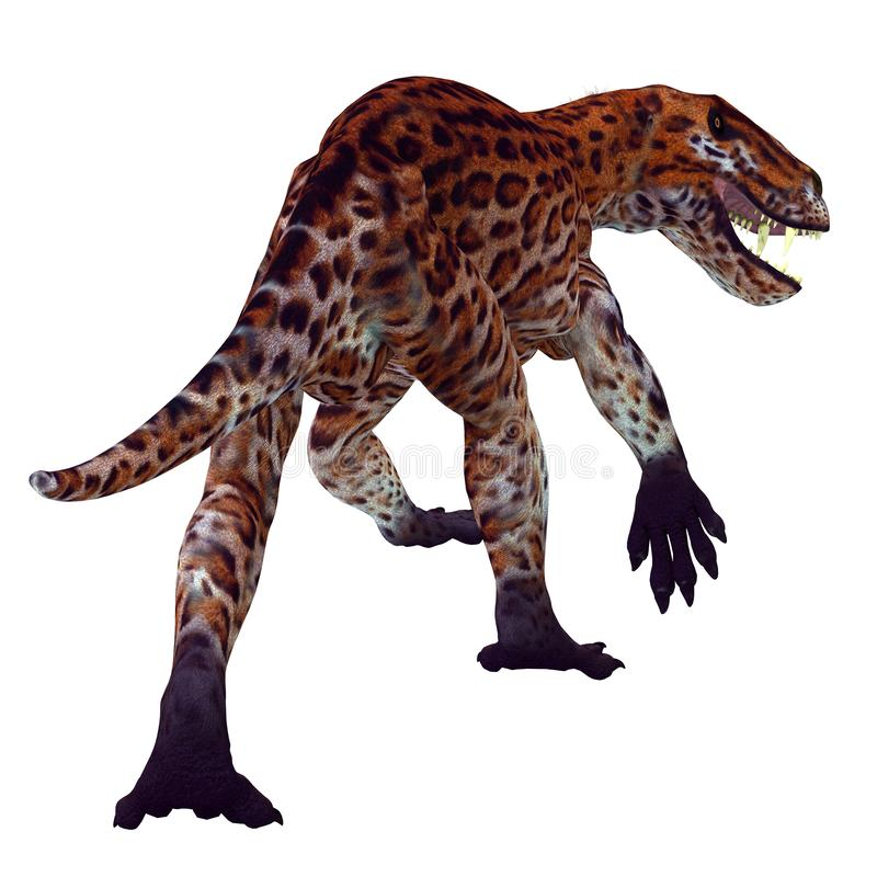 Lycaenops Cat Tail. Lycaenops was a carnivorous cat-like dinosaur that lived in South Africa during the Permian Period royalty free illustration