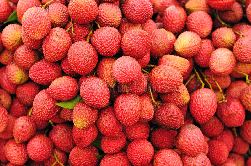 lychee καρπών ώριμο στοκ εικόνες